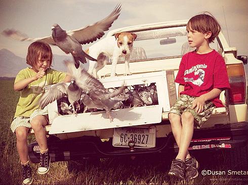 kids-pigeons.jpg