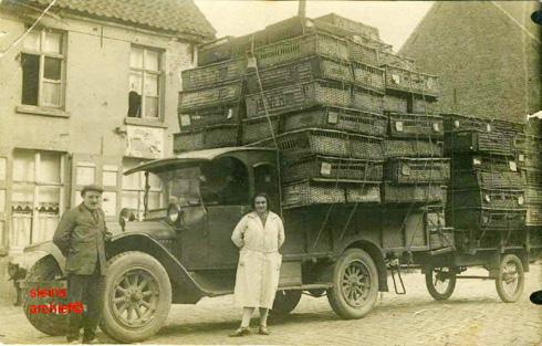 transport-porumbei-istorie