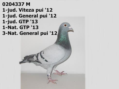 generalulxx