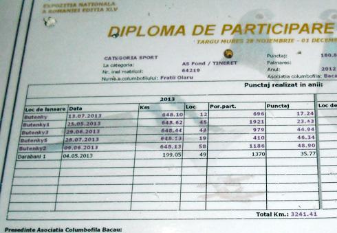 diploma219