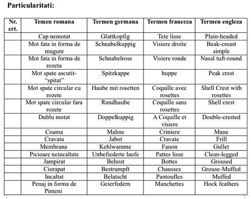 standard-particularitati