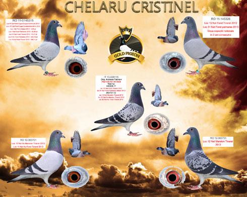 Colaj-Chelaru-Cristinel