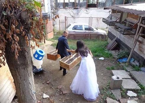 imbarcare-nunta2