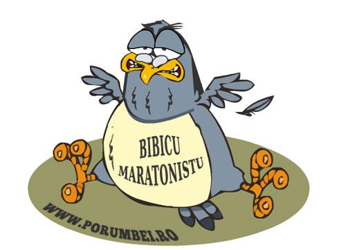 bibicu-maratonistu