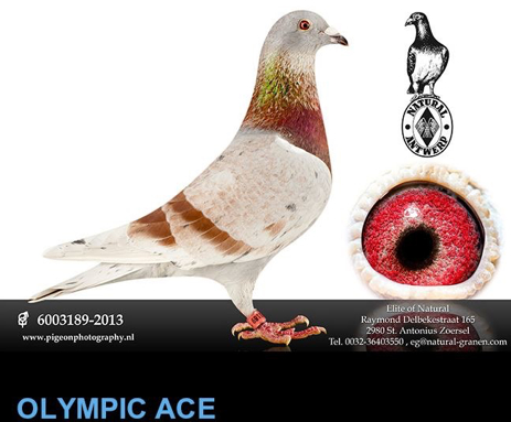 olympic-ace