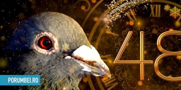 La multi ani! Porumbei.ro